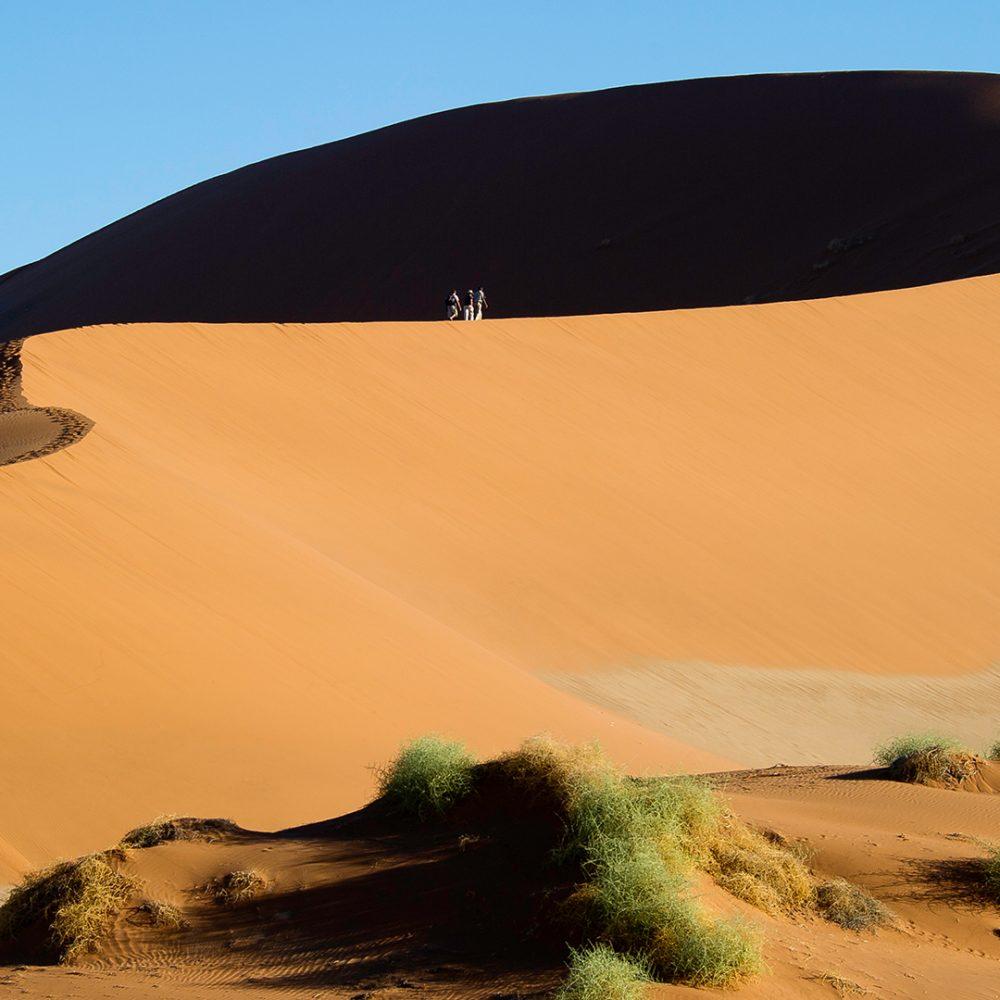 ©-Wildernes-Big-Daddu-Sands-Dune