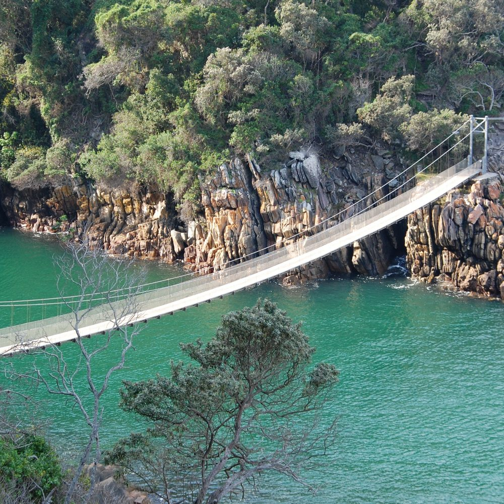 Garden Route suspension bridge